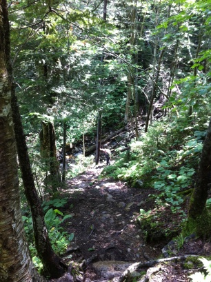 steep up