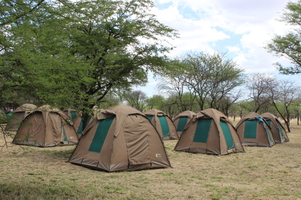Our campsite on the Serengeti